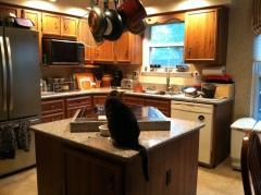 Kitchen Then